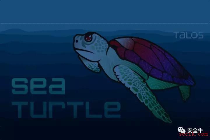 """民族国家黑客团队""""海龟""""大规模开展DNS攻击"""