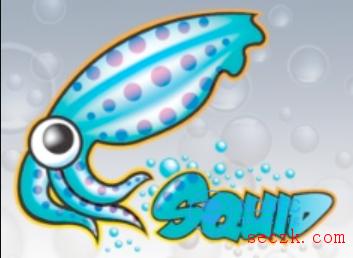 【漏洞预警】Squid服务器最新漏洞(含缓冲区溢出导致的RCE)