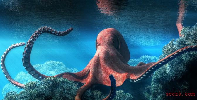 章鱼扫描器:一种攻击开源供应链的恶意软件