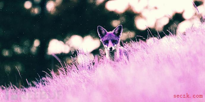 Purple Fox恶意软件正大肆攻击Windows设备